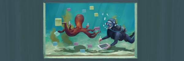 When innovation is your only option: lessons from an octopus
