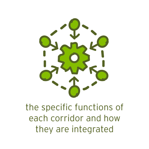the specific functions of each corridor and how they are integrated
