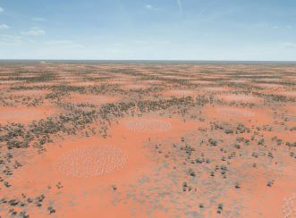 Designing the SKA infrastructure has been immensely challenging due to the unusual constraints required to support such a sensitive radio telescope in outback Australia in a way that does not interfere with the radio signals coming from the Universe.