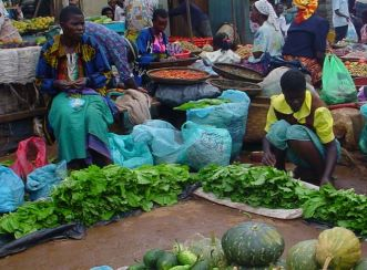 Malawi Poverty Alleviation Food Security Programme