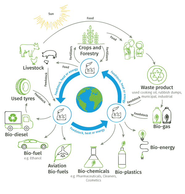 Circular economy value chains