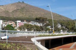 Granger Bay Boulevard and Green Point Roundabout Traffic Circle - circle planter on deck