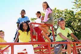 The Gauteng Schools Programme
