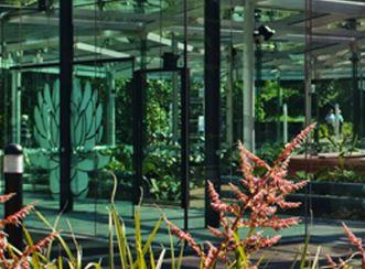 Amazon Waterlilly Pavillion
